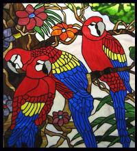 Macaw Paradise Stained Glass Window Panel - by Phil ...