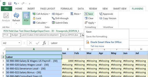 Custom Styles on Hyperion Planning Forms