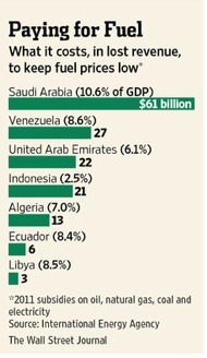 Fossil Fuel Subsidy-GDP Cost