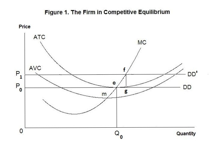 The Firm Under Competition and Monopoly