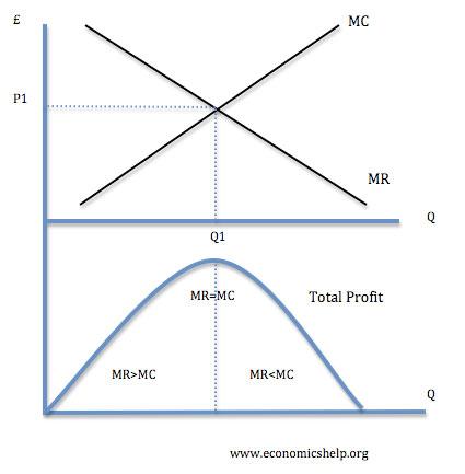 Profit Maximisation Economics Help - profit & loss sheets