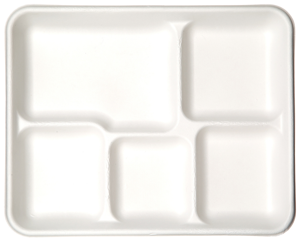 Renewable Compostable 5 Compartment Sugarcane Food Tray