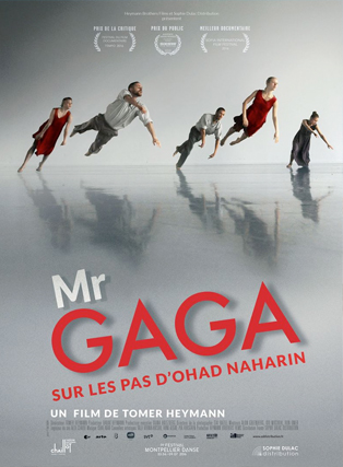 Mr GAGA, SUR LES PAS D'OHAD NAHARIN