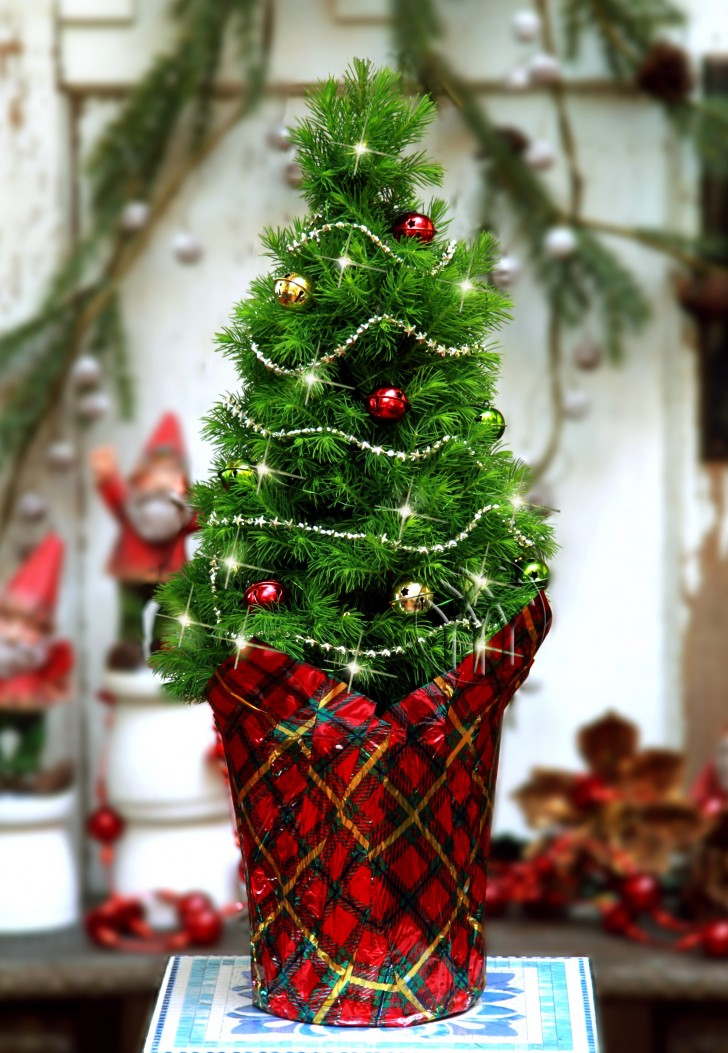 35 Picture-Perfect Christmas Tree Ideas You Have Never Seen Before - mini christmas tree decorations