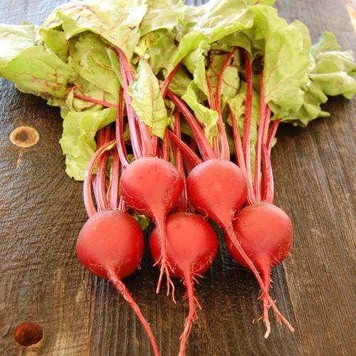 Medium Crop Of When To Harvest Beets