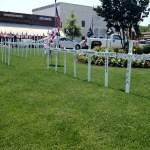 memorial_crosses