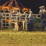 Sandy Oaks Pro Rodeo-53