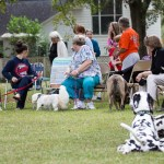 Blessing of the Animals 2013-31