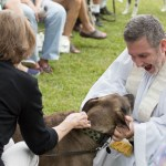 Blessing of the Animals 2013-84