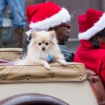 Edgefield Christmas Parade 2013-68