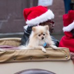Edgefield Christmas Parade 2013-69