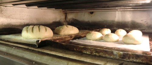 Italian bread and roles ready for baking