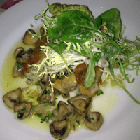 Compte risotto cake with mushrooms and salad.