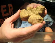 White Truffle at Hotel Missoni