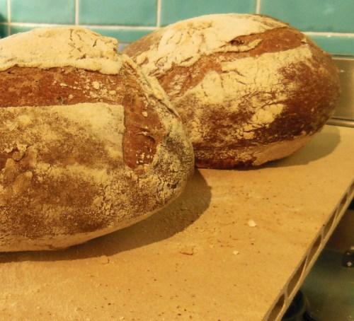 Bread baked on the Pepita