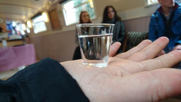 Solid Liquids Gin Cruise