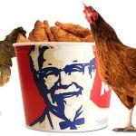 Dans Les Backstages d'un Restaurant KFC