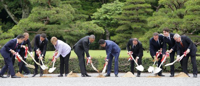 g7 planting trees
