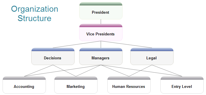 Example Of A Sole Proprietorship Company Chron Organisational Structure Of Boeing Management Paradise