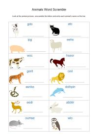 Animal Worksheet | Free Animal Worksheet Templates
