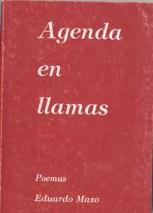 AGENDA EN LLAMAS-NUEVO