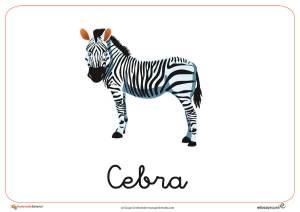 Fichas de Animales Salvajes: Cebra