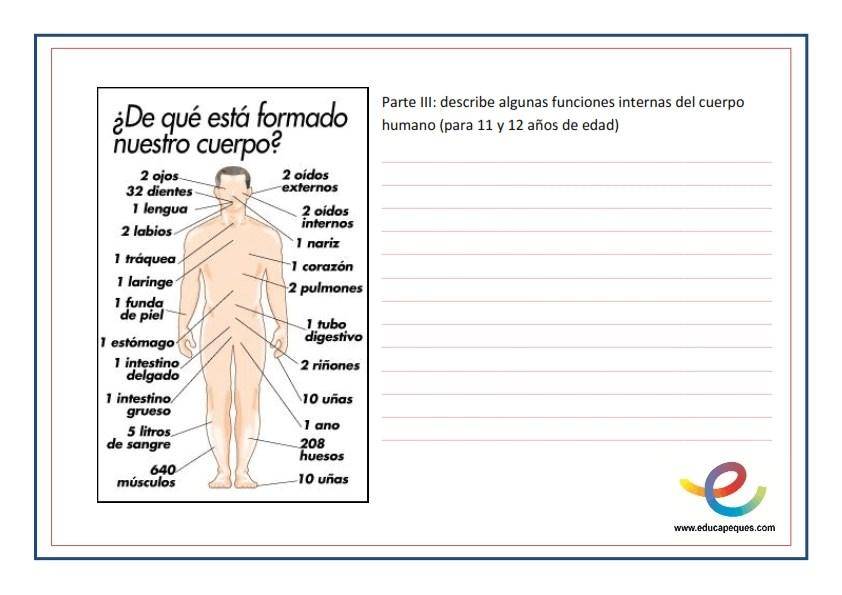 Escuela12 .Juan Zorrilla de San Martín .Dinamizando2016: CIENCIAS EL ...