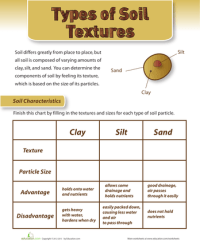 Can You Dig It: Rocks and Soil | Printable Workbook ...
