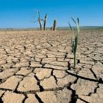 Introducción a la desertización