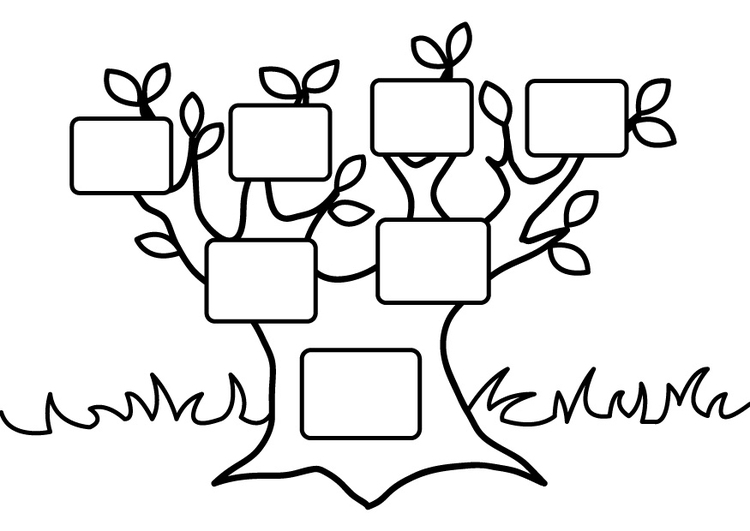 Coloring page empty family tree - img 26875
