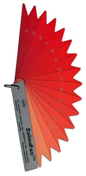 Edward Tufte forum What color is your salmon, flamingo, leaf, soil