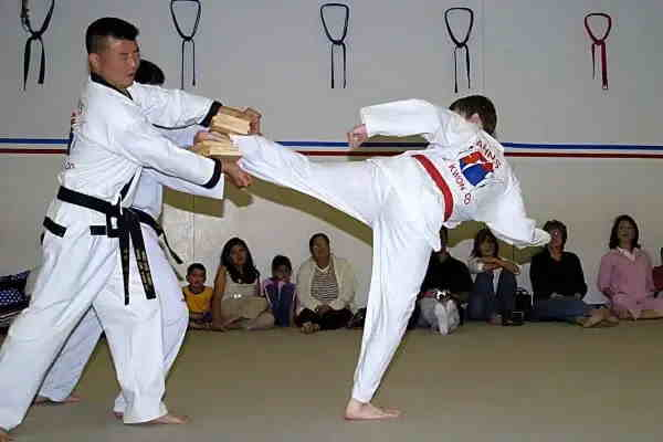 Muay Thai vs Taekwondo which style is more effective?