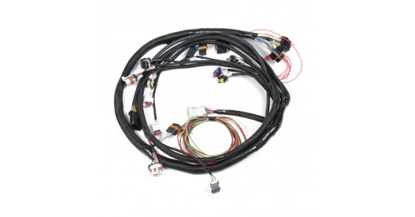 holley dominator efi harnesses on wire harness controlling