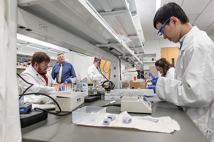 Graduate Programs Biomedical Engineering (BME) - biomedical engineering job description