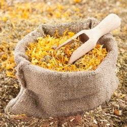 Herbs Magic