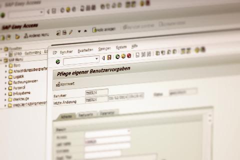 SAP® Basics for Beginners - sap for beginners