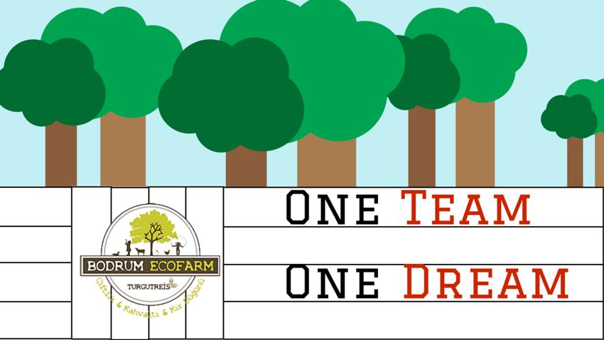 Bodrum - One Team One Dream