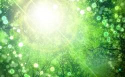 見えないエネルギーの身体的な影響の度合い【波動体質】について