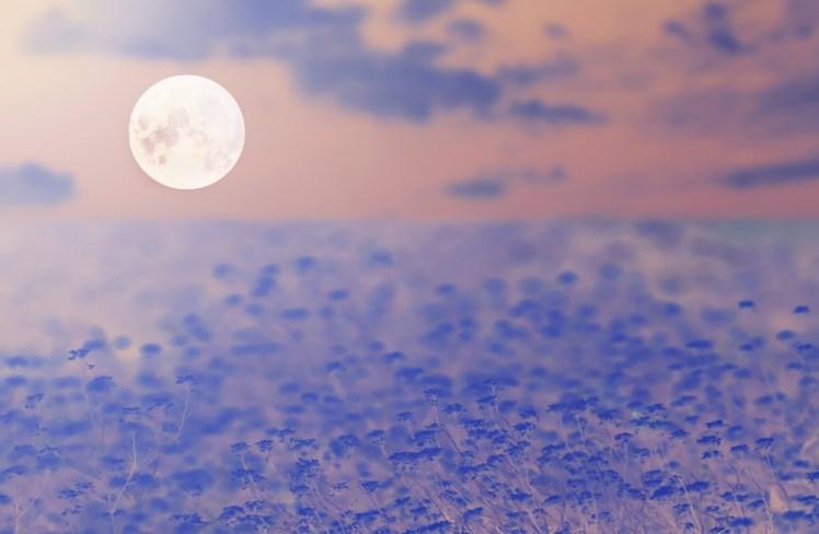 <2015年11月26日(木)07:44 託氣流キネシ 満月解釈>