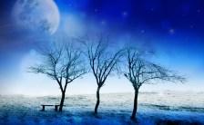 蒼月紫野の「新月のお願い事」vol.13〜「2016/01/10 10:31 山羊座の新月」