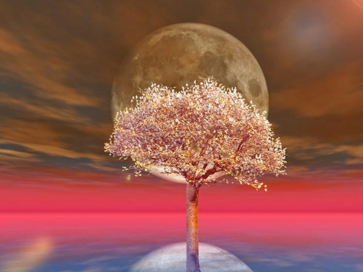 春を迎えるにあたって~天秤座の満月に人間関係を見直しましょう~