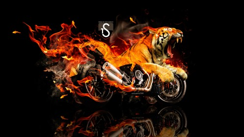 How To Make A Dynamic Wallpaper For Iphone X Ducati Diavel Tiger Fire Fantasy 2013 El Tony