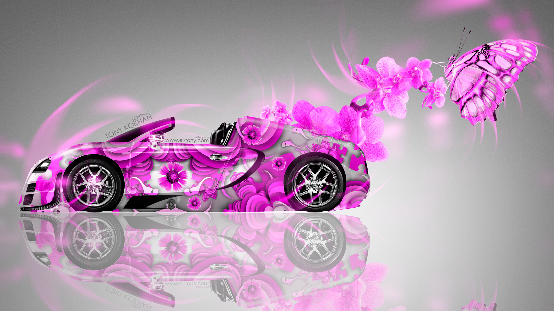 Audi Car Logo Wallpapers Bugatti Veyron Roadster Fantasy Flowers Butterfly Car 2014