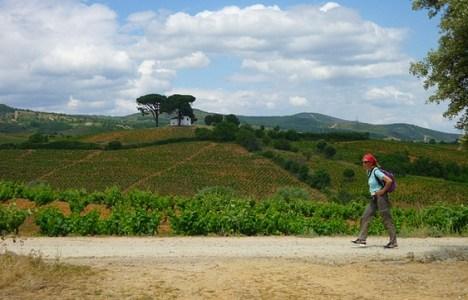 Foto de archivo del Camino de Santiago a su paso por la villa del Burbia