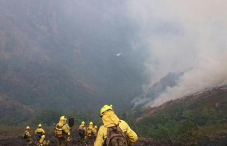 Las Brif trabajando en el incendio de Candín (@briftabuyo)