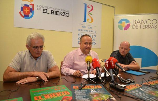 El alcalde de Vega de Espinareda (I) junto al presidente comarcal (C) y el representante de los técnicos de la Asociación Berciana de Agricultores (D), durante la presentación. / QUINITO