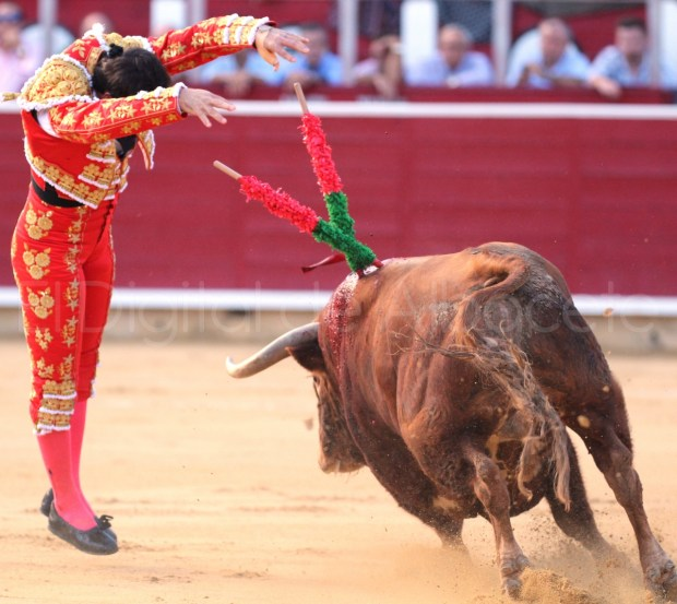 Fandi Castella y Manzanares Feria Albacete Toros  23