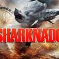 """Erster Trailer zum Mega-B-Movie """"Sharknado"""""""