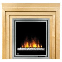 Napoleon 30-in Plug-In Electric Fireplace Insert w/ Glass ...