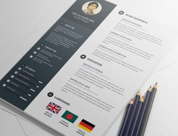 20+ Free Resume Design Templates for Web Designers Elegant Themes Blog